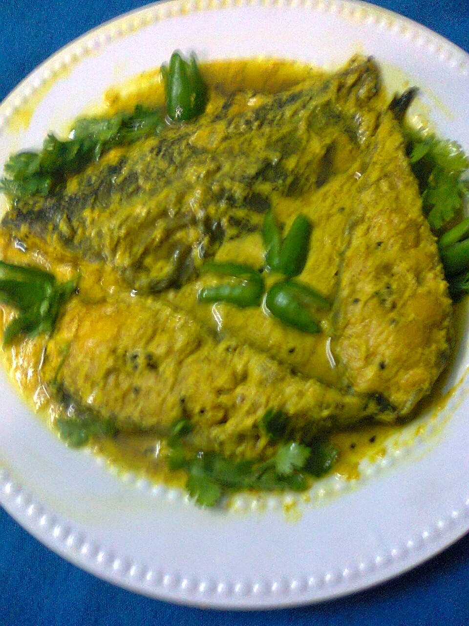 Boal Fish (Wallago) In Mustard Sauce/Boal Macher Gravy