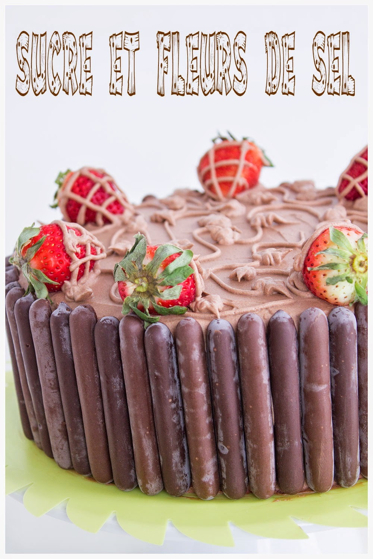 Gâteau au chocolat et sa crème au beurre facile.