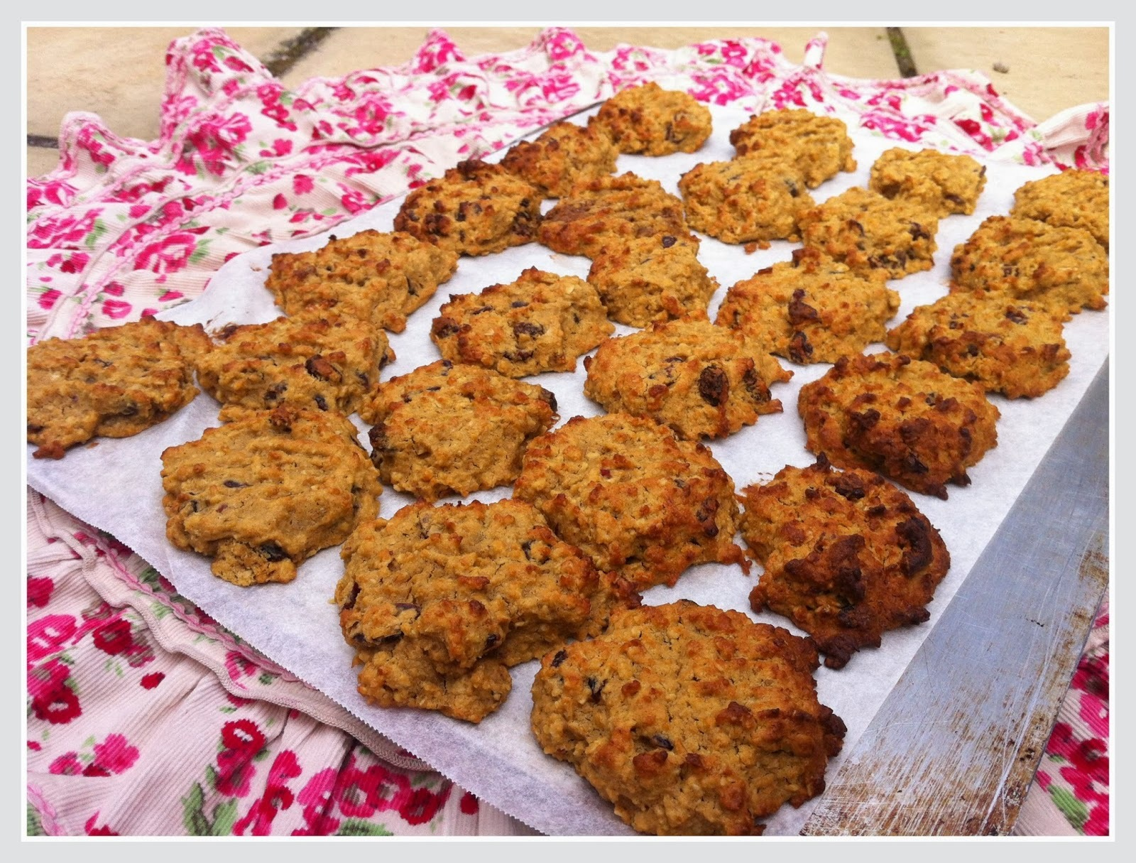 Cranberry oatmeal cookies (with chickpeas) ~ a recipe