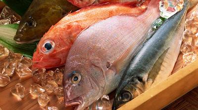 quem tem colesterol alto pode comer atum em lata