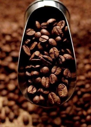 CAFÉ, AMARANTO E CÁRTAMO.