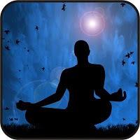 Revista Meditação 11 - Meditação para uma Mente Plena - Mirna Grzich