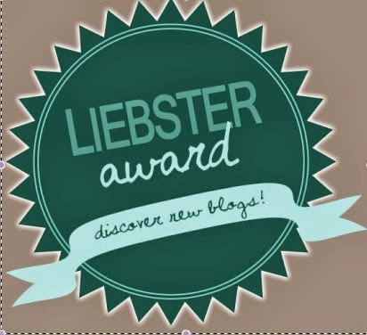 LIEBSTER AWARD - BLOG AWARD !!!