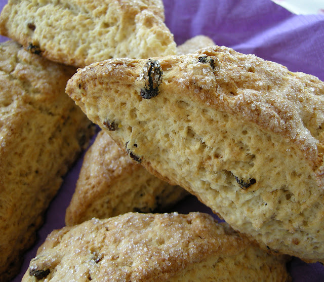 Scones de iogurt i panses