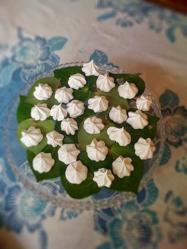 Kawakawa meringues and biscotti