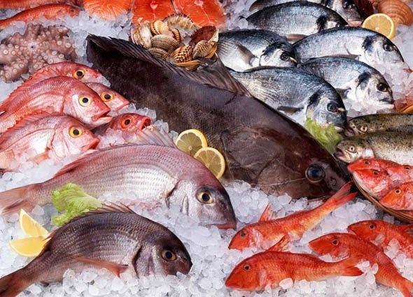 Dicas para comprar peixes