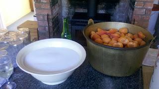 25 Jars of Apricot Jam + Recipe