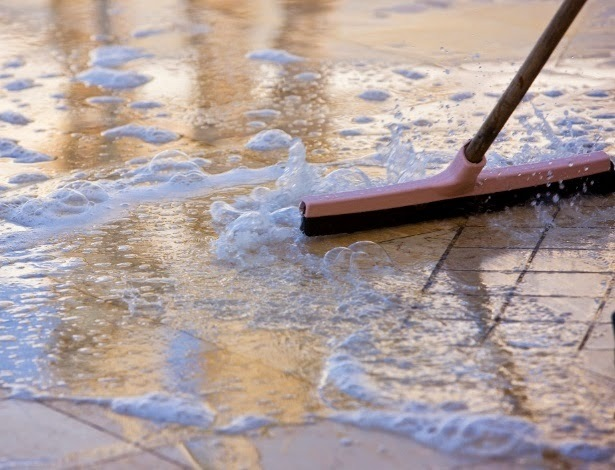 Como eliminar cheiro de xixi de animal em casa