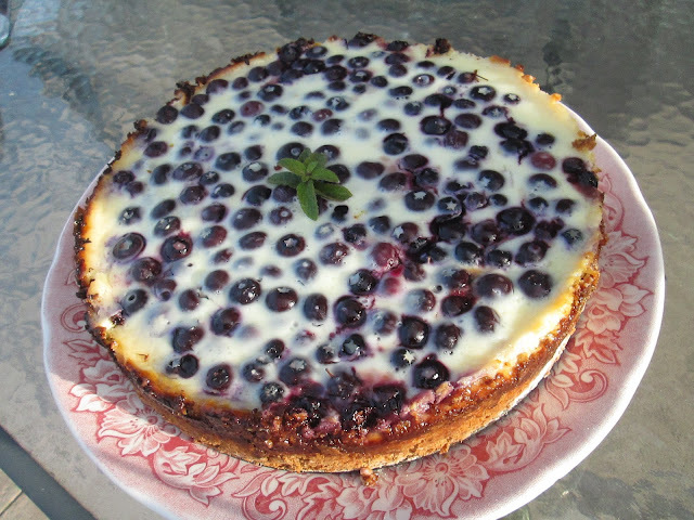 Blueberry kuchen (chile) a Guest post