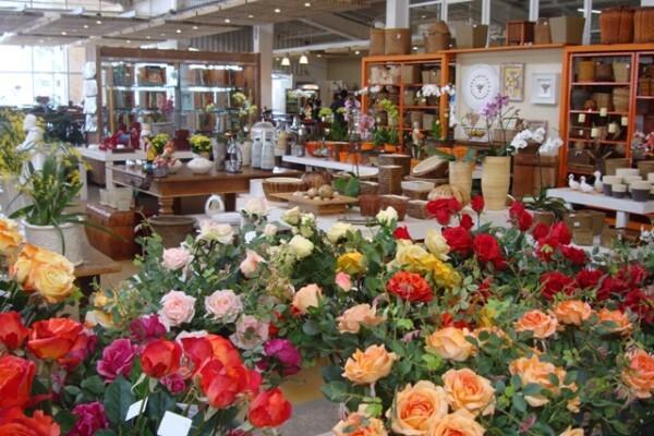 Primavera Garden: Comida boa e um bonito passeio