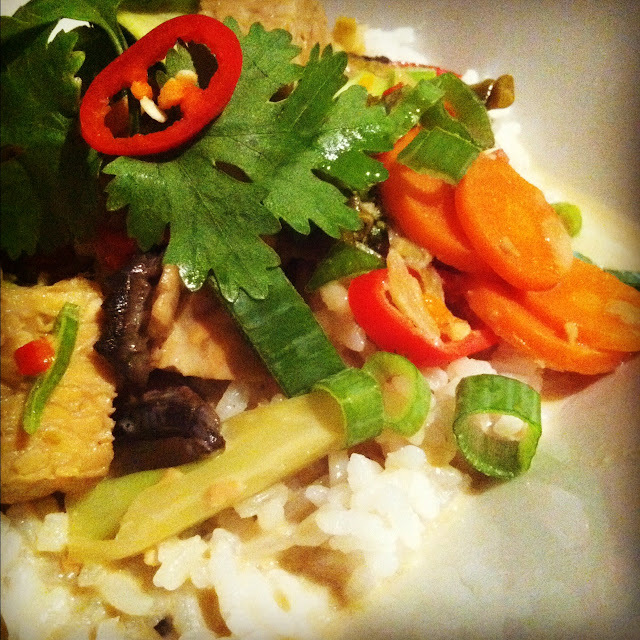 Tempeh with Thai-Coconut Sauce