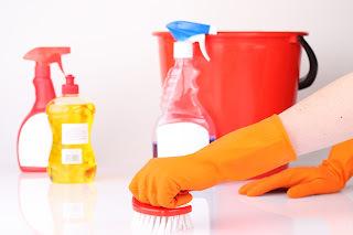 Receitas de produtos de limpeza ecológicos