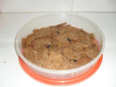 biscoito de aveia e castanha de caju