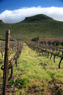 Kranskop Wine Estate - just a skip and hop from Robertson