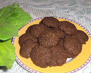 Nóis na foto - Biscoitos de cacau no microondas