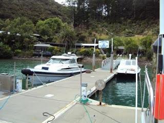 KIngfish Lodge - Fine Food and Fun - Whangaroa Harbour