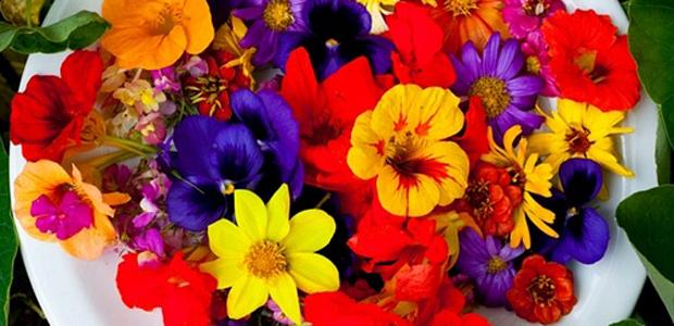 saladas decoradas como imagens