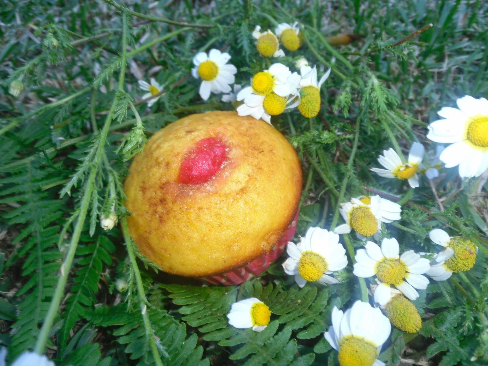 Uns queques de milho, iogurte e gengibre para o aniversário do blogue da Margarida