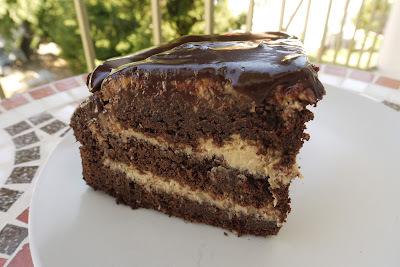 Čokoládovo kokosová torta