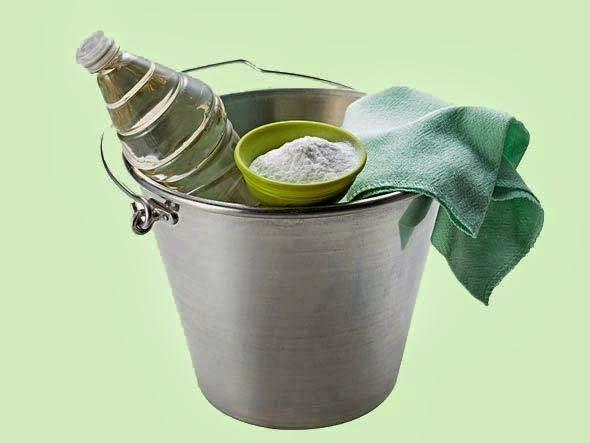 Limpeza Verde: Produtos Ecologicamente corretos
