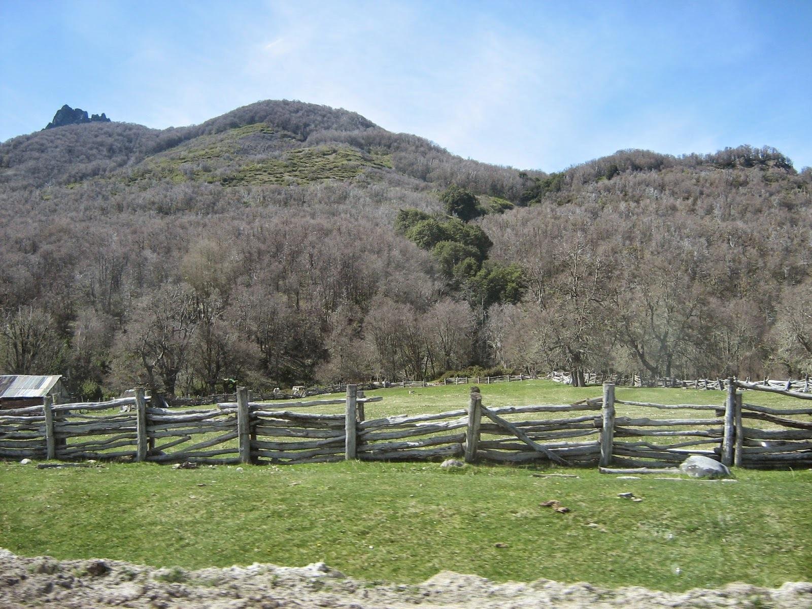 La cocina patagónica (II)