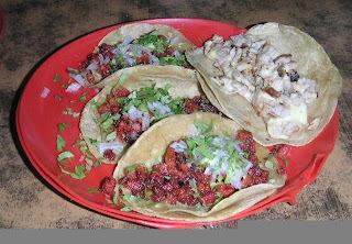 Tortilla - A massa do taco mexicano