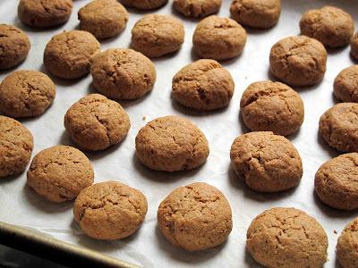 Spicy Dutch Coconut Cookies