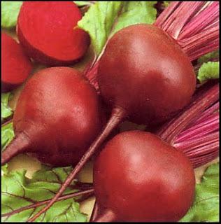 BETERRABA, uma raiz deliciosa!