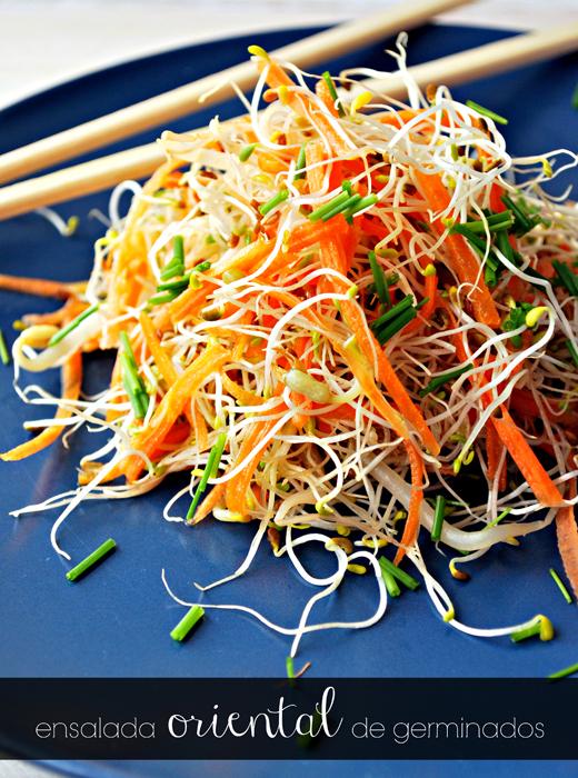 adiós google reader, ¡hola bloglovin'!... y ensalada oriental de germinados