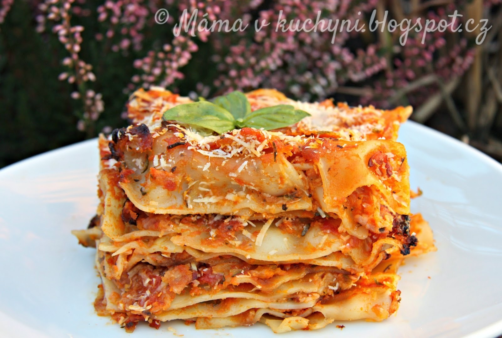 Dýňovo-cuketové lasagne (od 1 roku)