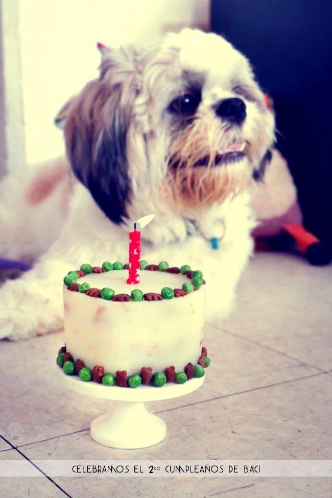 Pastel de Cumpleaños para Mascotas