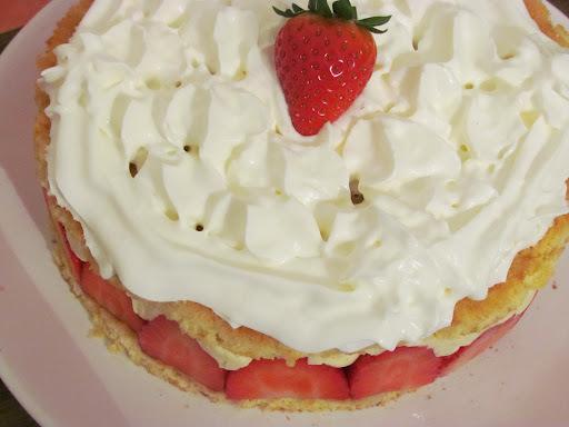 Un fraisier en hiver ?