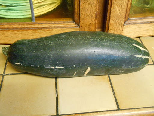 Madhouse recipe : Stuffed Marrow