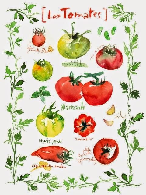 Batatas e tomate