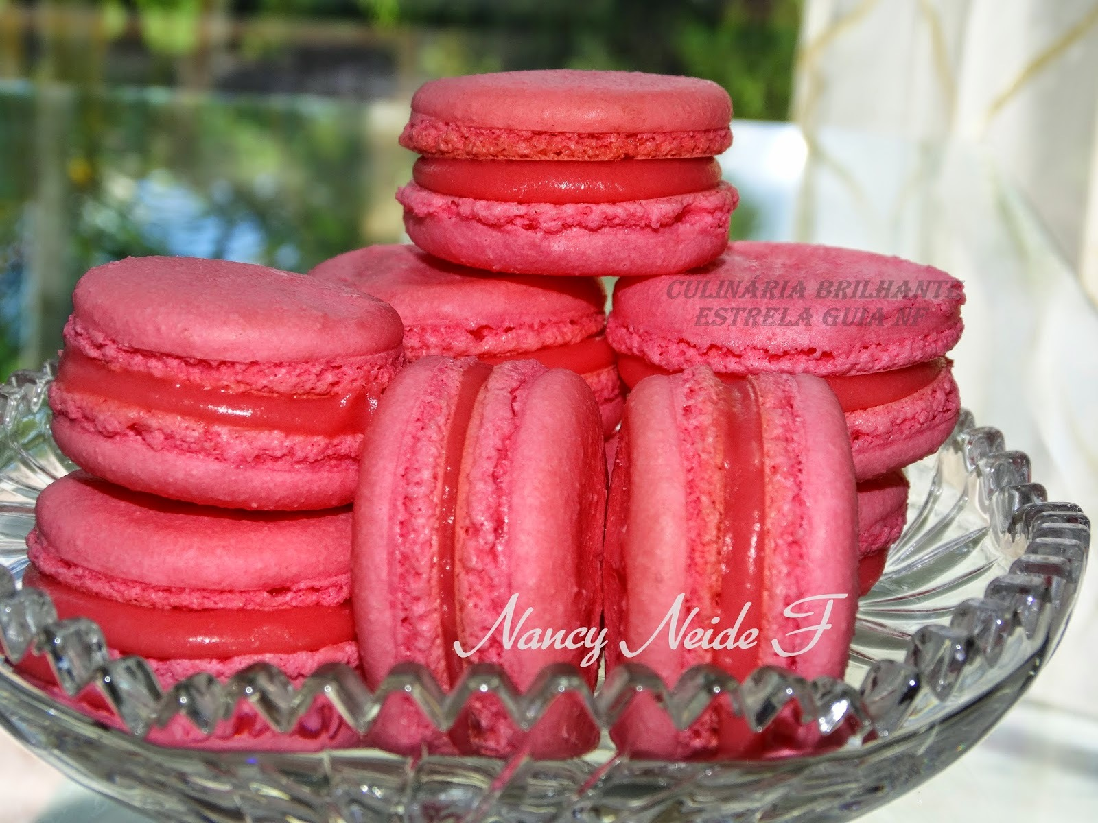 Macarons de Nancy