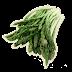 de espargos de conserva