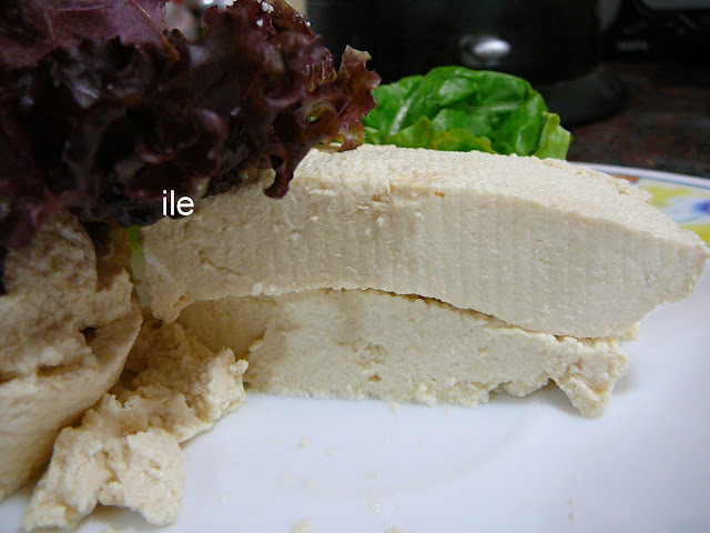 Tofu - Queso de soja