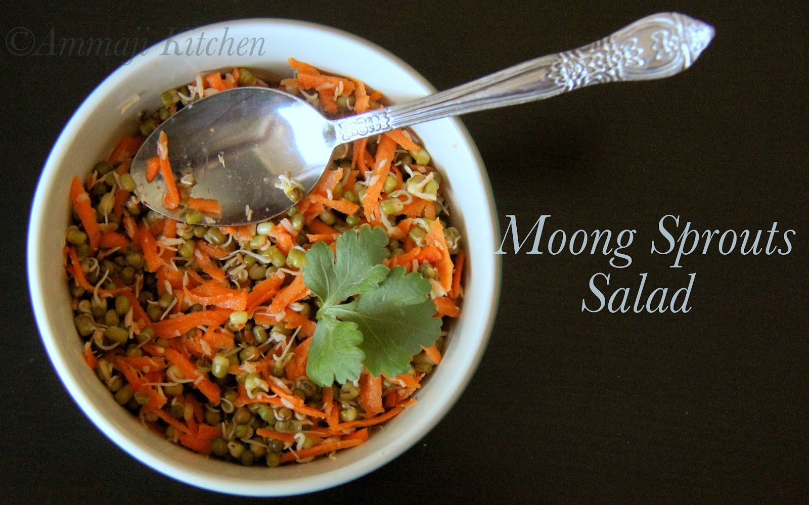 Mung Sprouts Salad | Moong Sprouts Salad | Sprouts Salad