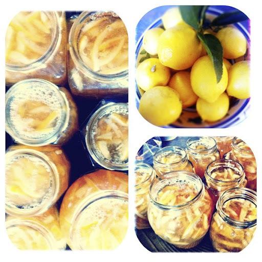 tangelo marmalade nz