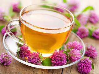 Chá para combater e tratar a enxaqueca, TPM e colesterol