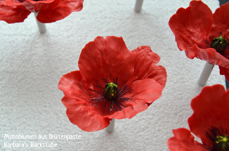 Mohnblumen aus Blütenpaste modellieren