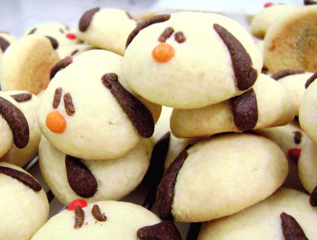 O Chocorango na TV! - Puppy Cookies