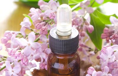 Florais - Remédios para a Alma