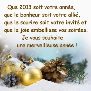Bonne Année 2013 !!!