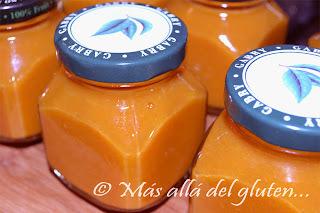 Mermelada Casera (Receta SCD, GFCFSF, Vegana)