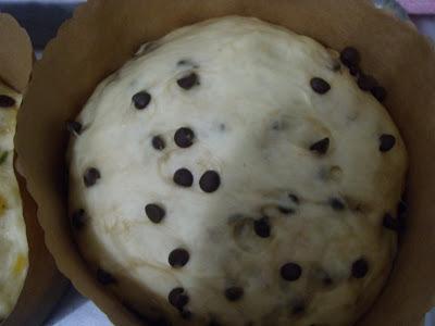 Chocotone