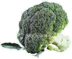 Prazer: Brócolis!