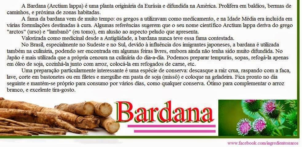 Você conhece a Bardana ?