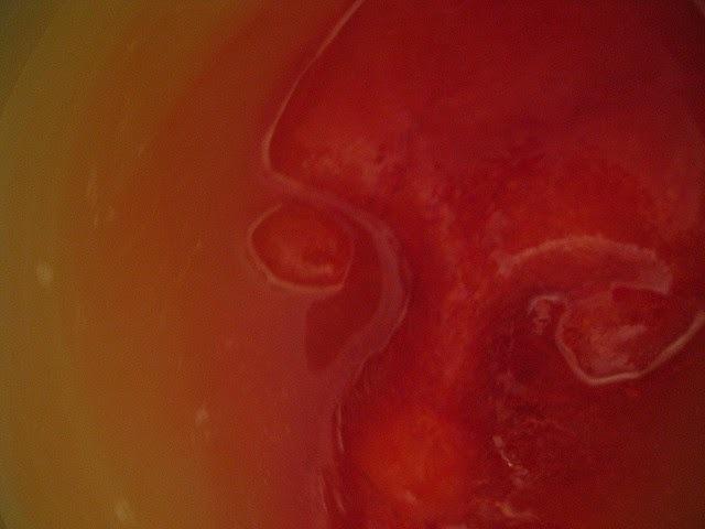 Recette de punch rouge au cidre d'Halloween, visage de glace, main glacée