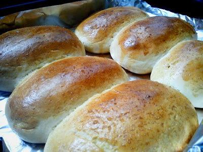 Massa básica para pão caseiro